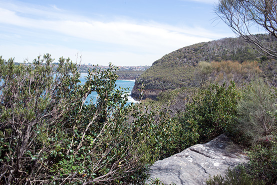 A glimpse of the rocky foreshore on the far side of Craters Cove, Sydney