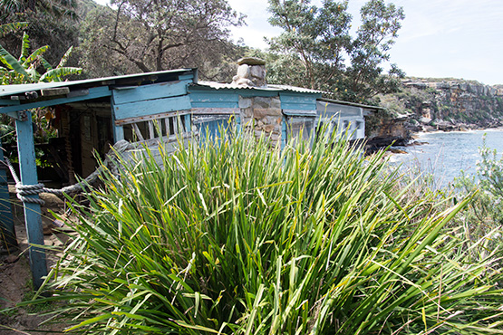 Wooden hut at Crater Cove, Sydney