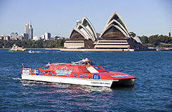 Sydney Harbour hop-on hop-off cruises