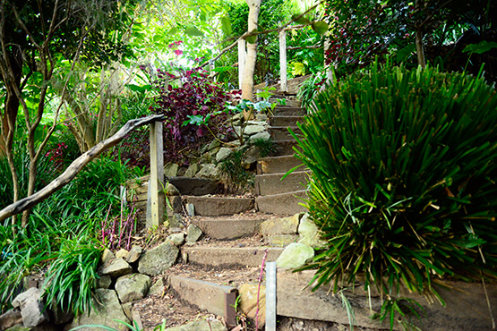 A steep set of steps in Wendy's Secret Garden in Lavender Bay, Sydney