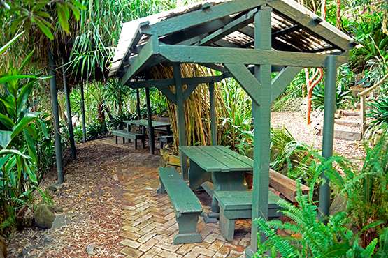 Sheltered garden settings in Wendy's Secret Garden in Lavender Bay, Sydney