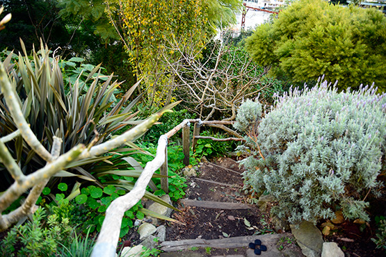 A small path leads down to Wendy's Secret Garden in Lavender Bay, Sydney