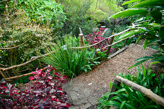 Tiered paths in Wendy's Secret Garden in Lavender Bay, Sydney